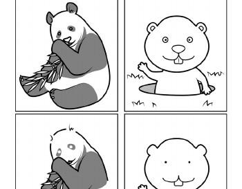 teach February Doodles