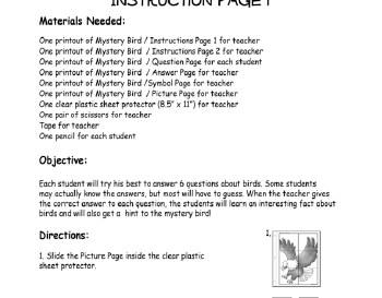 teach February: Mystery Bird